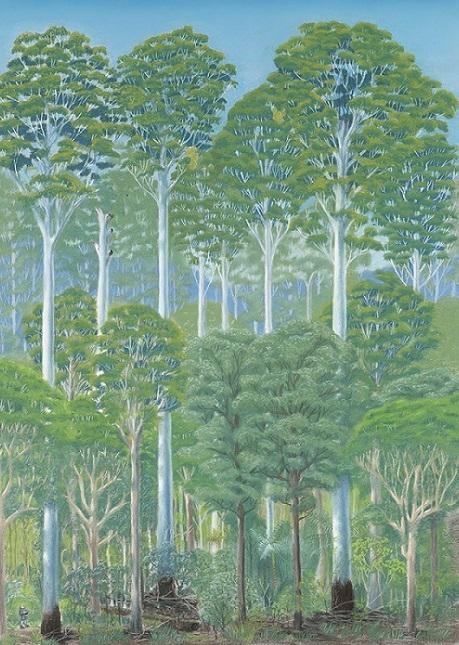 Wet sclerophyll forest - flooded gums (pastel)